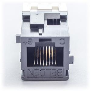 Belden-AX101066